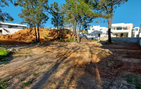 BUILDING PLOT WITH PROJECT IN FONTE SANTA