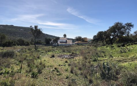 PLOT WITH VIABILITY TO BUILD IN LOULÉ