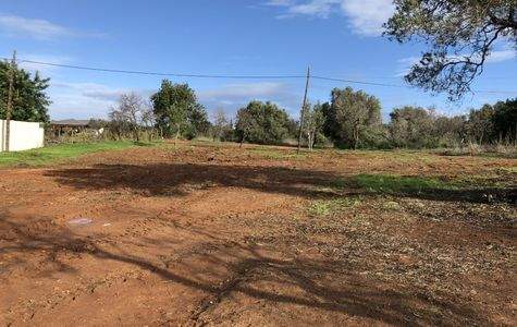 PLOT WITH VIABILITY TO BUILD IN BOLIQUEIME